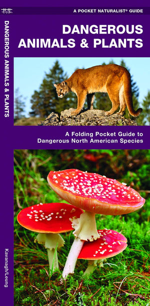 Dangerous Animals & Plants: A Folding Pocket Guide to Dangerous North American Species (Pocket Naturalist Guides)