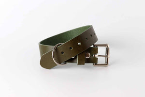 olive green leather dog collar by kaseta