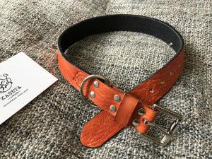 ソフト犬の首輪  coleira cachorro  halsband hund  Tan Dog Collar
