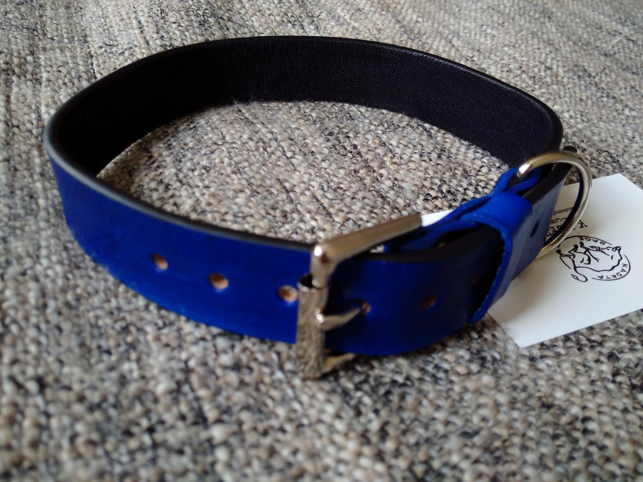 dog collar & leads for puppies blue leather