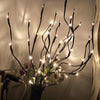 Image of LED Willow Branch Lights - Firefly Marketplace