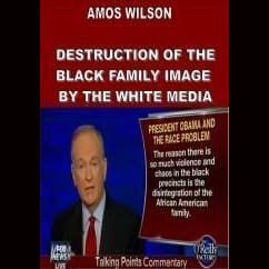 Amos Wilson Destruction Of The Black Family I Dvds & Blu-Ray Discs
