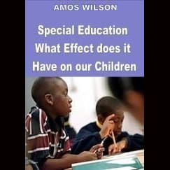Amos Wilson Special Education What Effect Do Dvds & Blu-Ray Discs