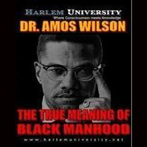 Amos Wilson True_Meaning Manhood Dvds & Blu-Ray Discs