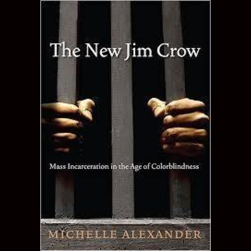 The New Jim Crow: Mass Incarceration In The Age Of Colorblindness Books