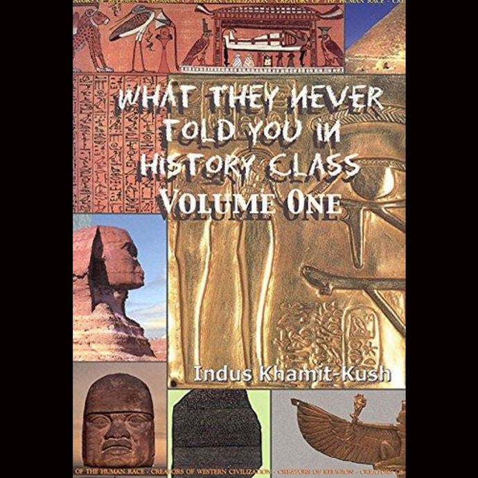 What They Never Told You In History Class Volume One Paperback $25.99