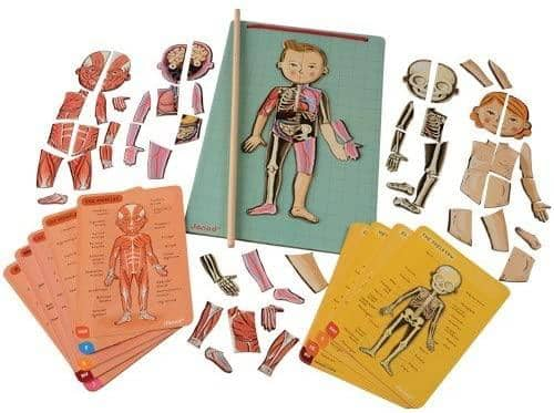 Janod Magnetic Dolls for Toddler, Wooden Anatomy Puzzle