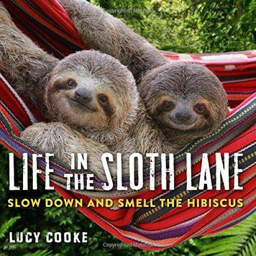 Life In The Sloth Lane (Paperback)-Kidding Around NYC