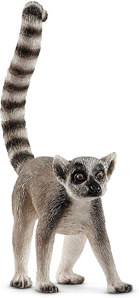 Ring Tail Lemur-Kidding Around NYC