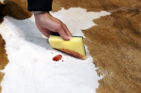 5 Tips For Cleaning And Care Of Cowhide Rugs Cowhides Direct