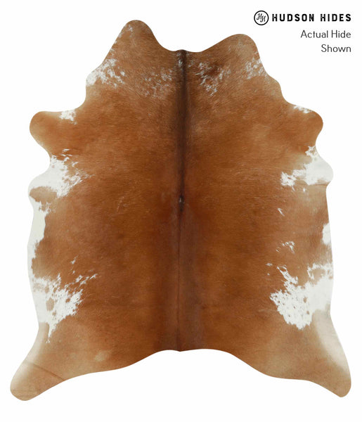 Brown and White Regular Cowhide Rug #14394