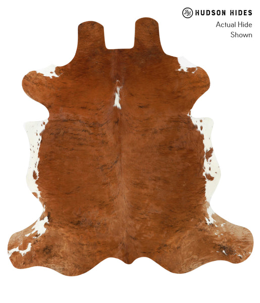 Brown and White Regular Cowhide Rug #21669