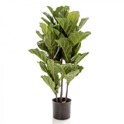 Fiddle Leaf Tree 93cm