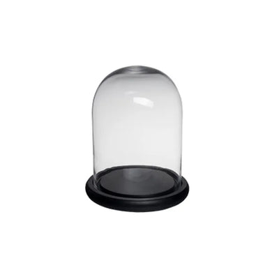 Glass Dome Small