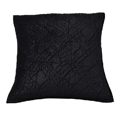 Oasis Black Pillow