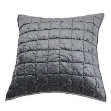 Lux Silver Pillow