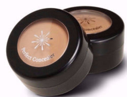Missha The Style Perfect Concealer - Missha Portugal