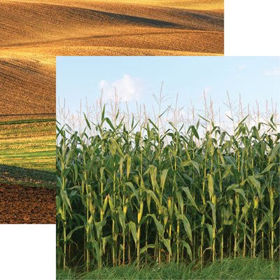 Field of Dreams - At the Farm 12x12 Scrapbooking Papers - 5pcs - by Reminisce