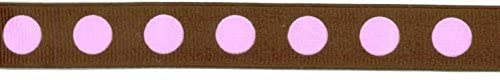 Chocolate Pink Big Dot Polka Dot Ribbon