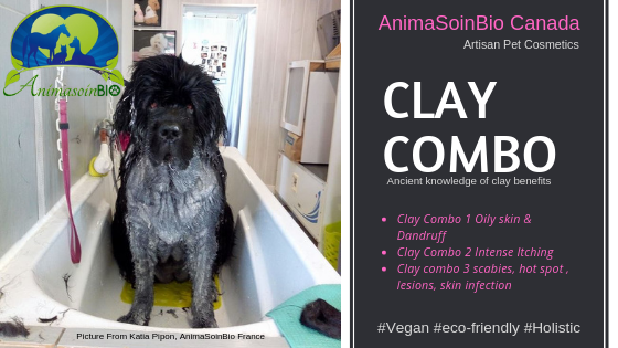 Clay Combo and mud bath benefits!
