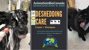 How to DeShedding with AnimaSoin Bio Canada!