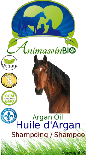 Cheval Shampoing Argan-P