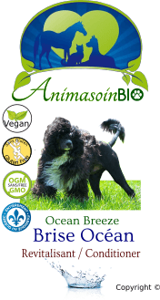 Brise Océan Revitalisant / Ocean Breeze Conditioner - P