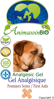 Gel Analgésique Chien / Analgesic Gel Dog -P