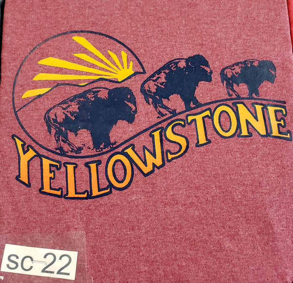 #SC-22 Trio of Bison
