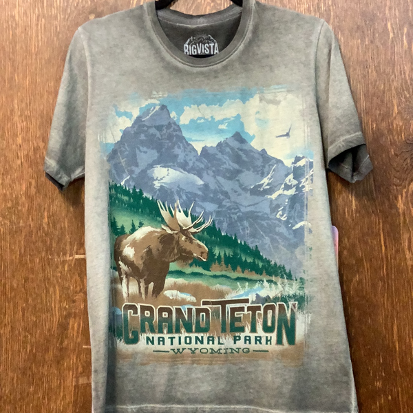 Big Vista Grand Teton Shirt Sleeve Tee