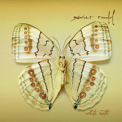 CD | White Moth (2007)