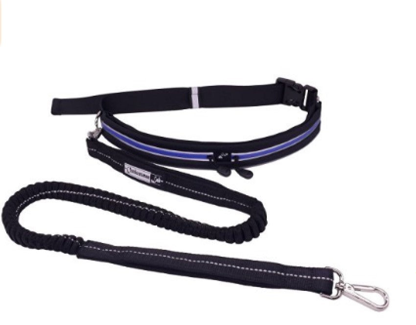 dog running leash with running belt