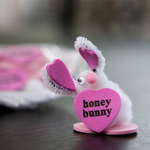 """Honey Bunny"" Craft Kit"