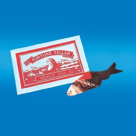 144 Miracle Fortune Telling Fish
