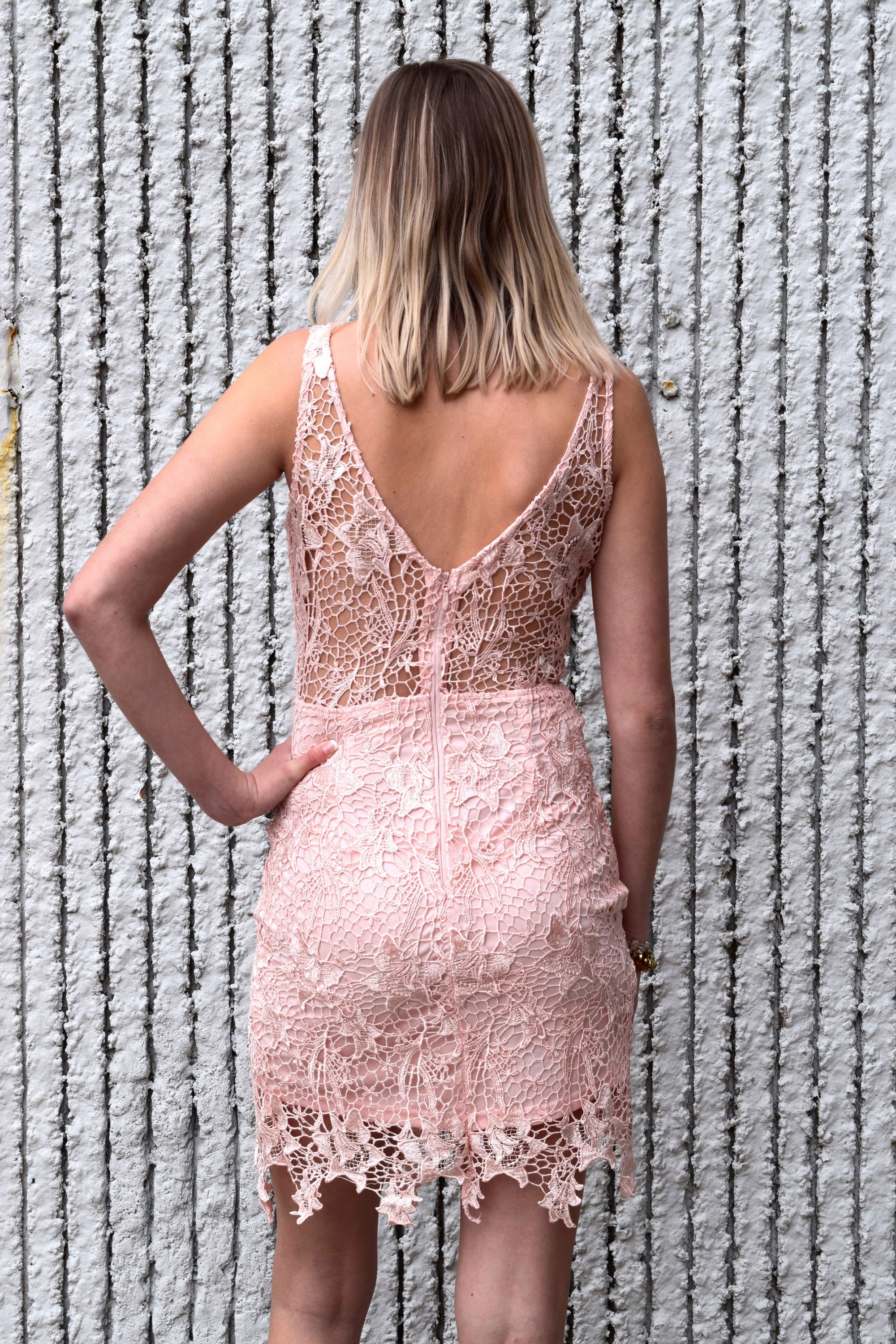 BLUSHING LACE FITTED DRESS