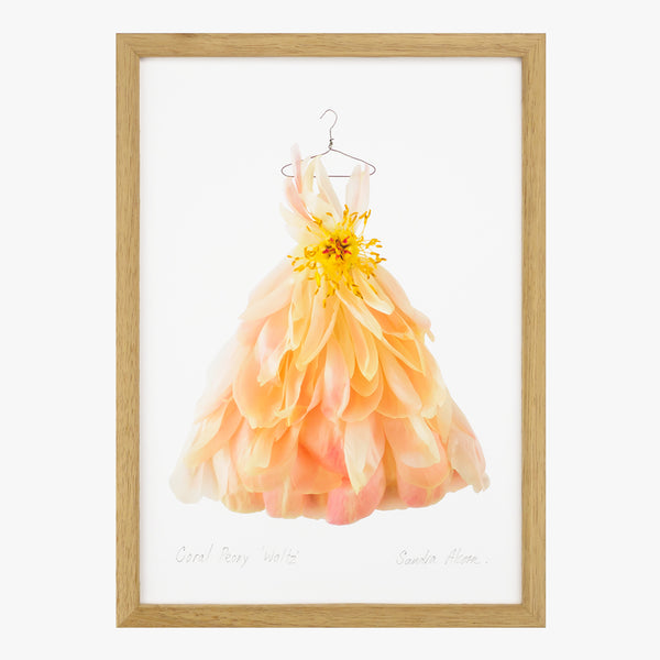 coral peony waltz dress art print by petal & pins