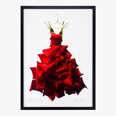 red rose gown art print by petal & pins