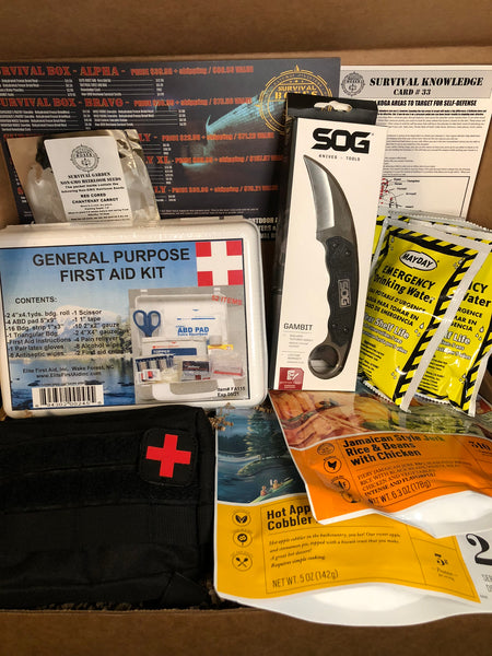 OCTOBER 2018 SURVIVAL BOX -ALPHA SELF DEFENSE FIGHT & FIRST AID