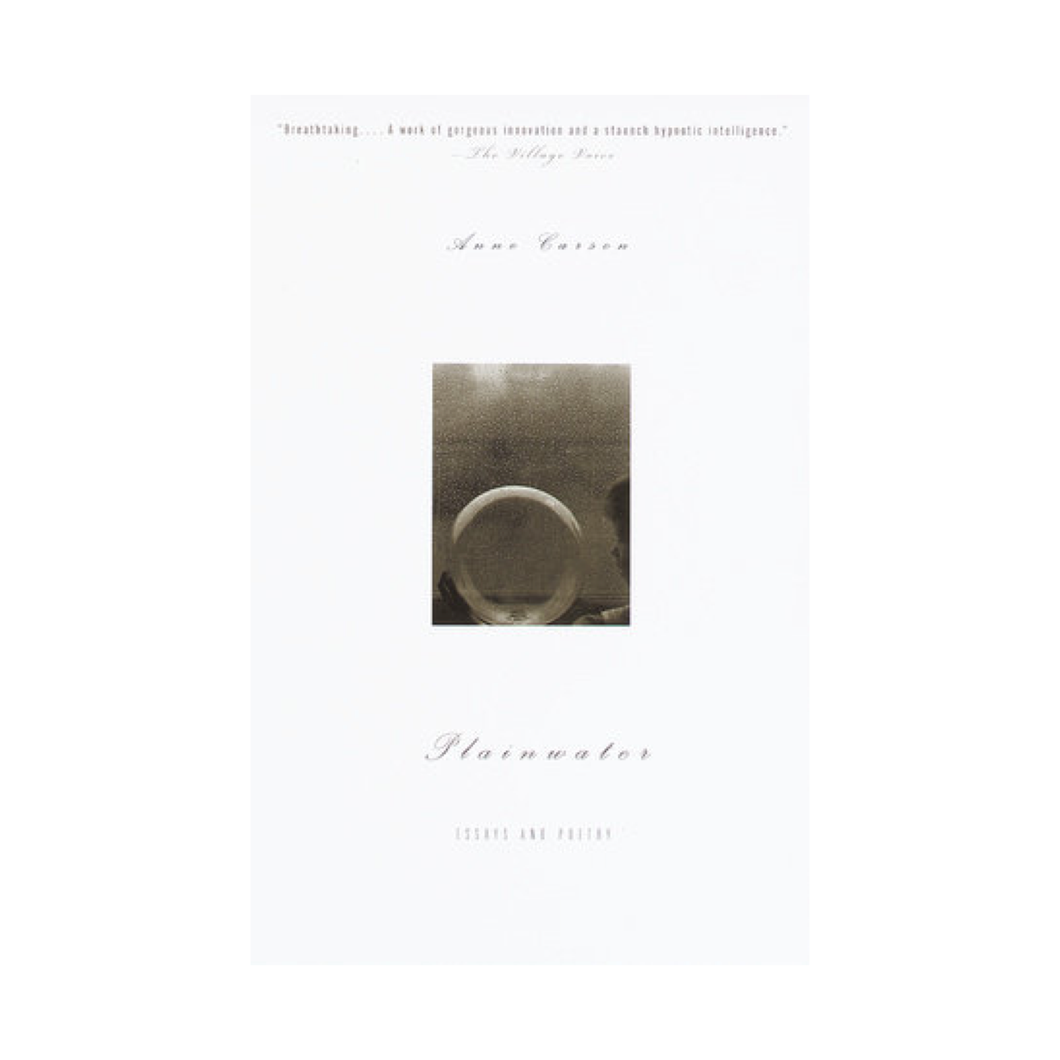 Plainwater: Essays and Poetry - Anne Carson