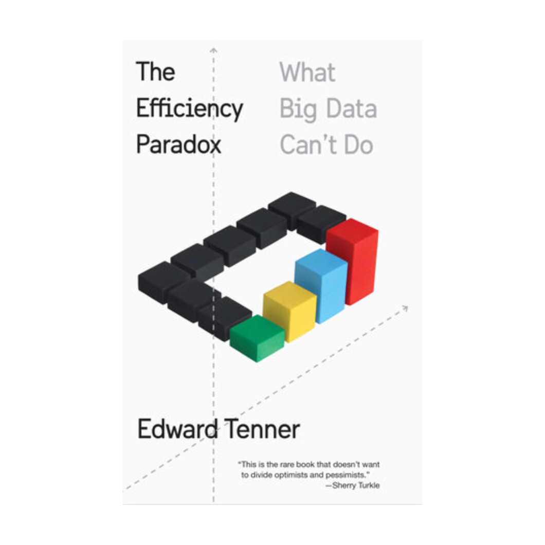 The Efficiency Paradox: What Big Data Can't Do - Edward Tenner