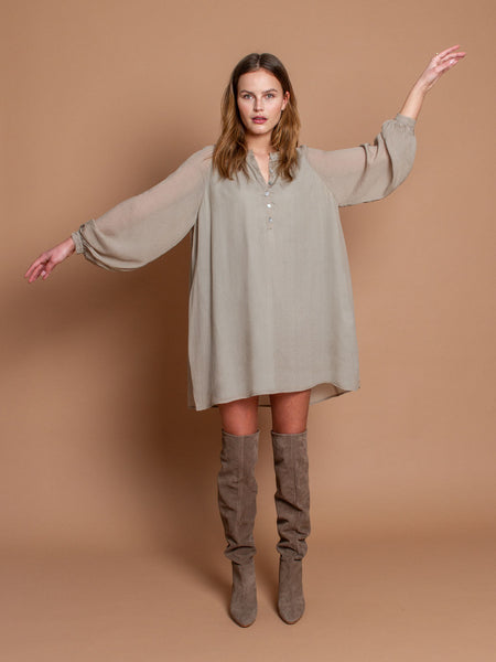 Alexa dress in Taupe silk