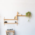 wall hung wooden shelving bookcase with plant