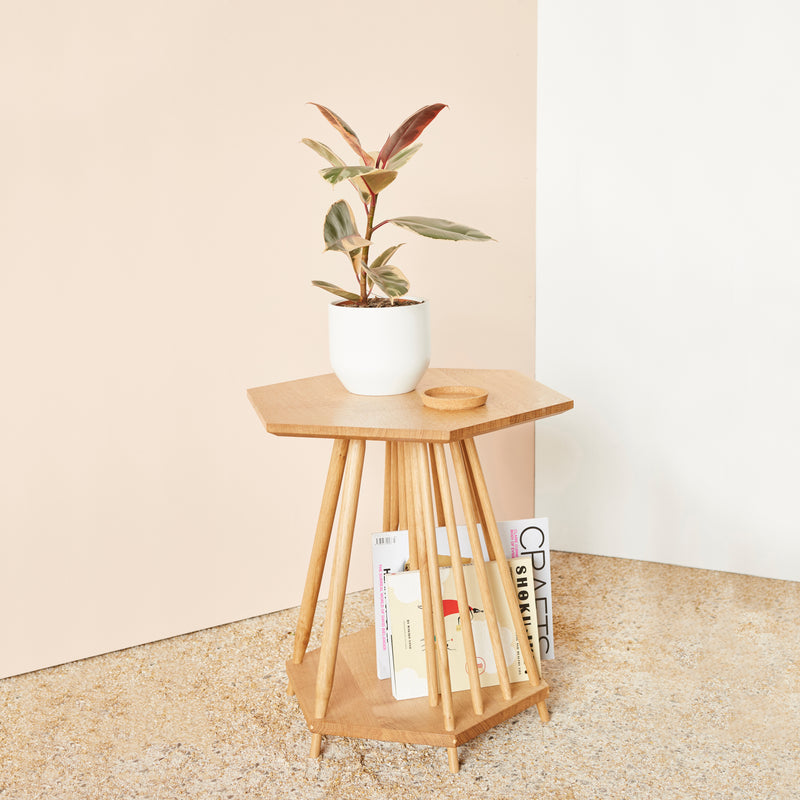 side table with magazines stored in spindles and plant