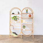arched freestanding wooden ladder shelving by John Eadon double unit set with plants