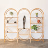arched freestanding wooden ladder shelving by John Eadon triple unit set collection display