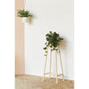Plant Stand with hanging planter