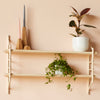 MIMA Shelving 2 shelf set with plants