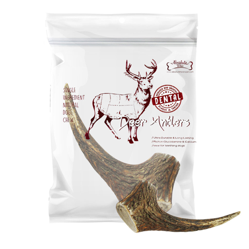 20% OFF: Absolute Bites® Whole Deer Antlers Dental Chew Dog Treats (4 sizes)