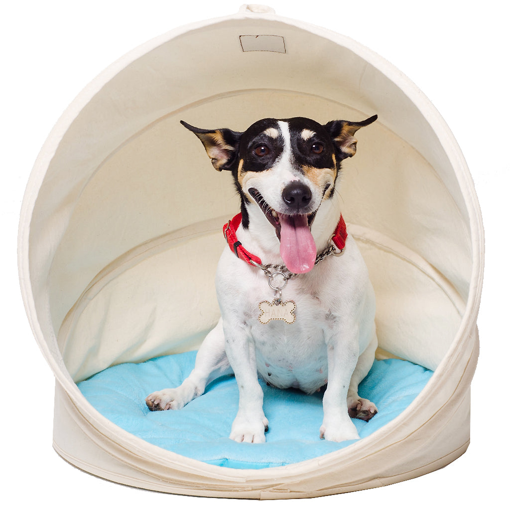 30% OFF: CJ® Stylish Shell Dog & Cat Bed (Large)
