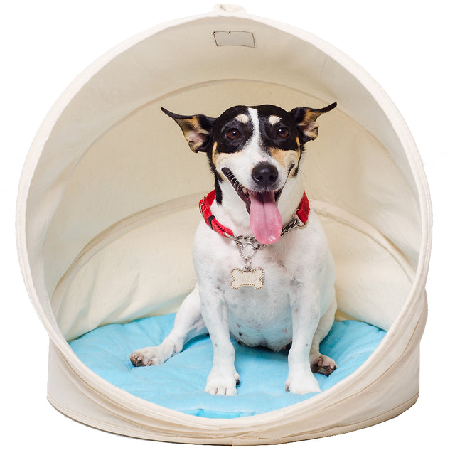 60% OFF [BFCM]: CJ® Stylish Shell Dog & Cat Bed (Medium)